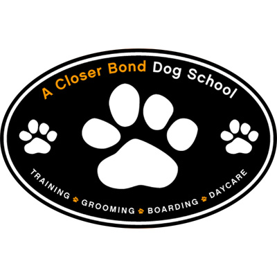 A Closer Bond Dog School